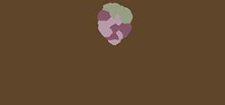 Vineyard Ranch at Temecula Logo