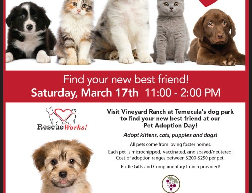2018 Pet Adoption Day – Saturday, March 17th